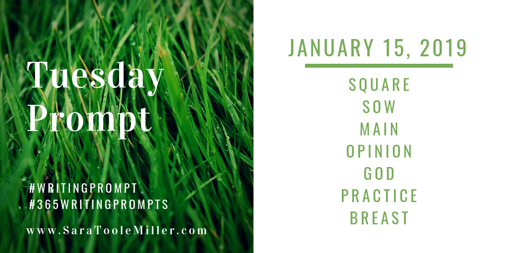 january 15 writing prompt