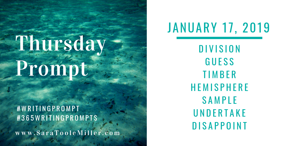 january 17 writing prompt
