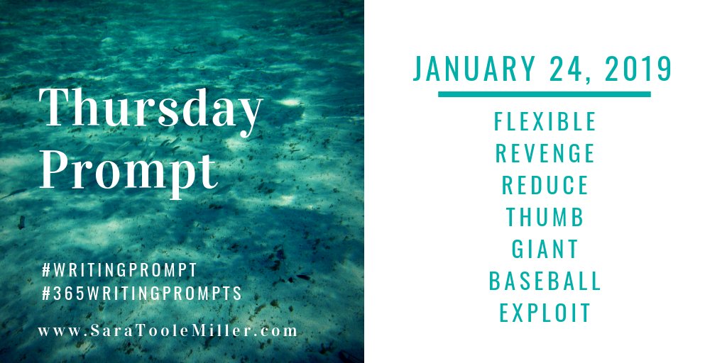 january 24 writing prompt