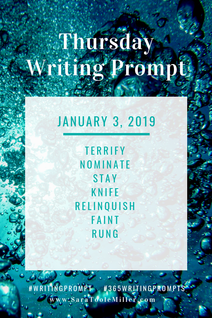 january 3 writing prompt 365